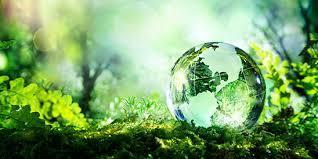 Miljöpolitiken – en paradox?